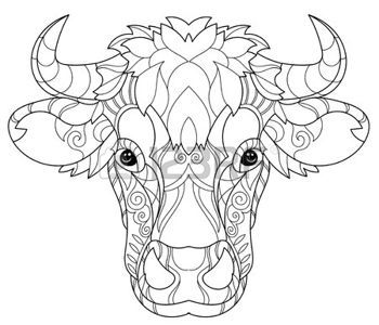 Coloring Pages Print Hand Drawn Doodle Outline Cow Head Decorated