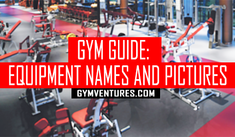 Gym Machines Guide for Beginners - Pictures and Names of