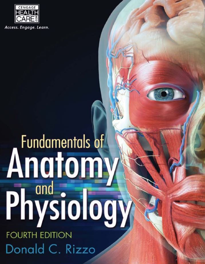 Fundamentals of Anatomy and Physiology 4th Edition by Donald