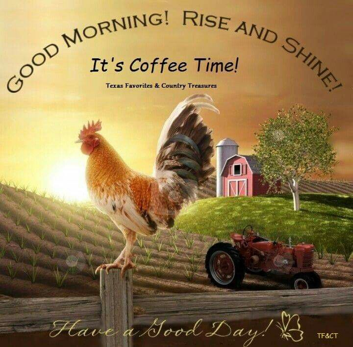 Good Morning Sunrise Farm Rooster Farm