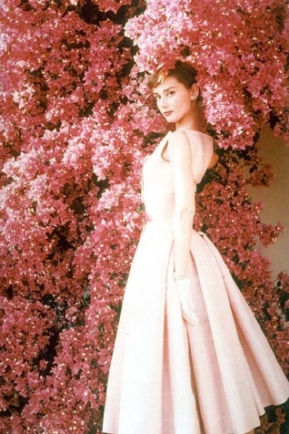 People even more than things have to be restored renewed revived pretty in pink audrey hepburn looks a true beauty in this classic fashion shot the darker background makes audrey truly stand out in full focus mightylinksfo Choice Image