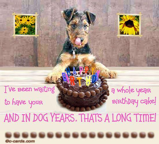 birthday dog wishes Google Search Funny Birthday – Funny Dog Birthday Cards