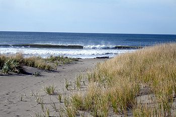 Twin Harbors Beach State Park   Beach Camping In SW Washington With Cabins  And Yurts Available