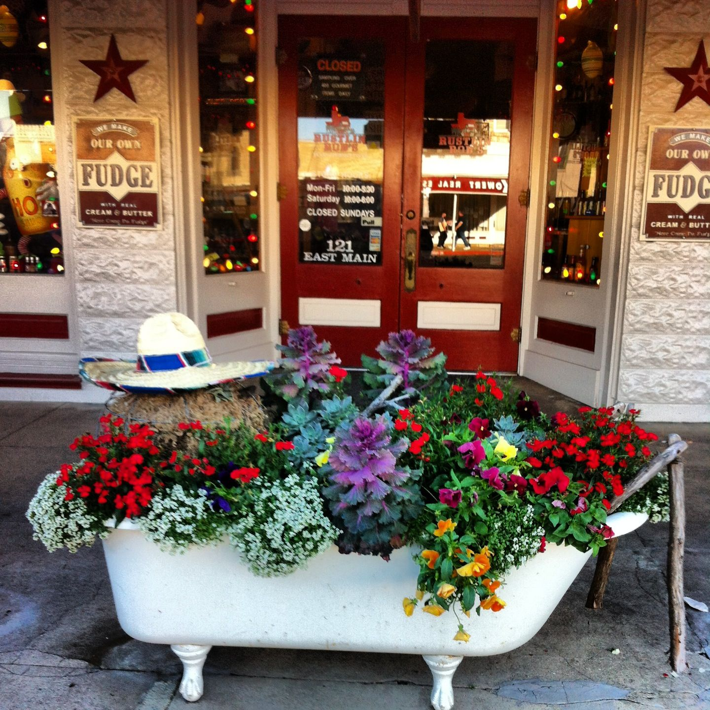 Claw foot tub planter in Fredericksburg. I have one of these in my backyard-true story. I want to do something like this.