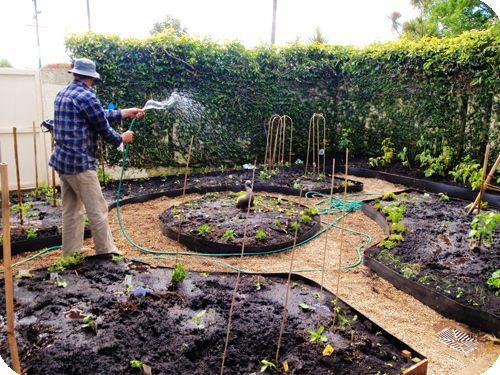 Permaculture Mandala Garden Design Great Use Of E