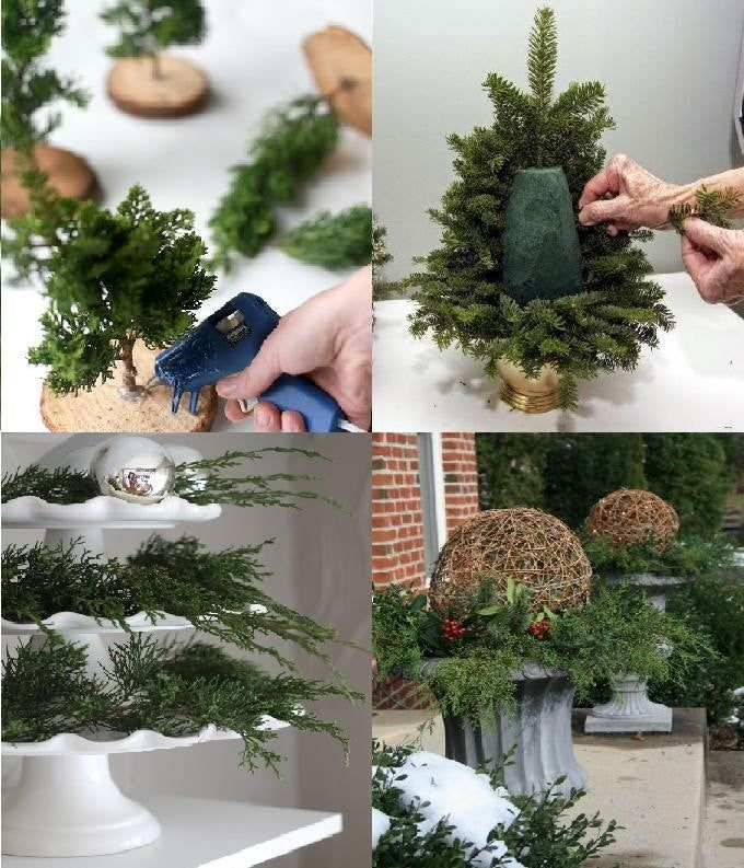 Fresh Evergreen Cuttings for DIY Holiday/Christmas Wreaths, Decorating