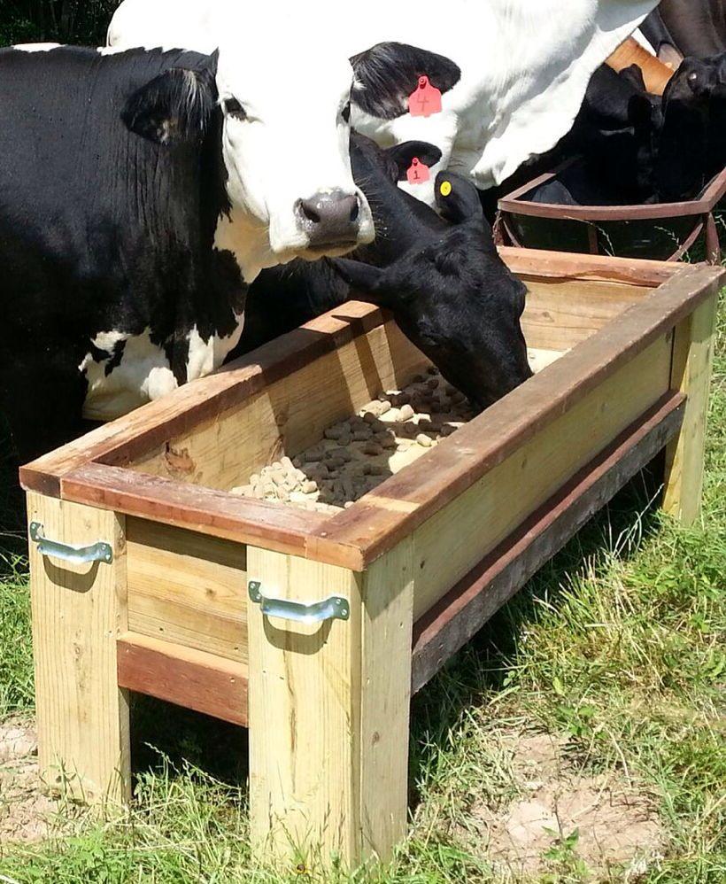 Cattle Feeder Student Built 6ft X 2ft X 2ft Garden Planter