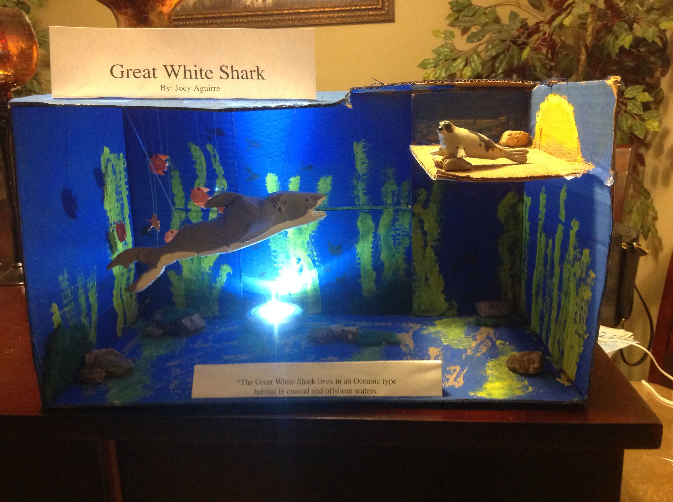 Great White Shark Project