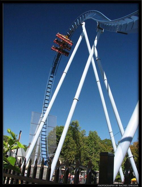 Griffon Water Park Rides Busch Gardens Williamsburg Best Amusement Parks