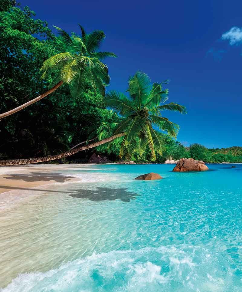 Selling Seychelles By The Seashore Beach Scenery Beautiful Beaches Paradise Beach Landscape