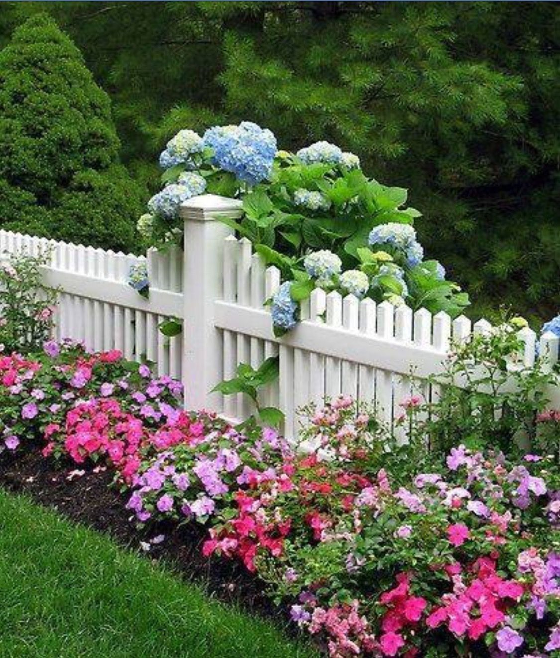 Picket Fence Sets Off The Colorful Flower Bed & Full