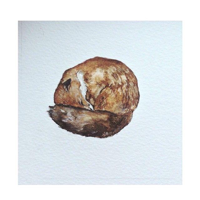 Sleeping Fox #art #artsy #instaart #instaillustration #illustration #illustrator #instadaily #paint #painting #sketch #sketching #draw #drawing #watercolour #animal #nature #cute #love #life #fox #foxes #sleep