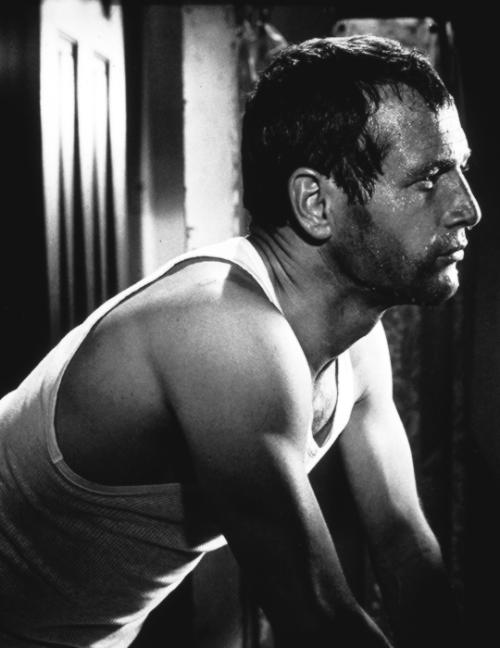 """deforest: """"Paul Newman in Harper (1966) """""""