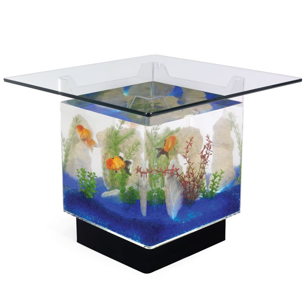 Couchtisch Aquarium - The Aquarium Coffee Table Random Fish Tank Coffee Table