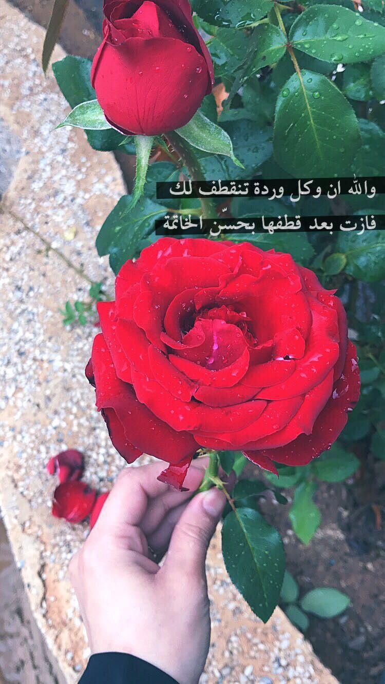 Pin By Alnada Alshamy On اقتباسات Girl Shadow Muslim Fashion Outfits Arabic Sweets