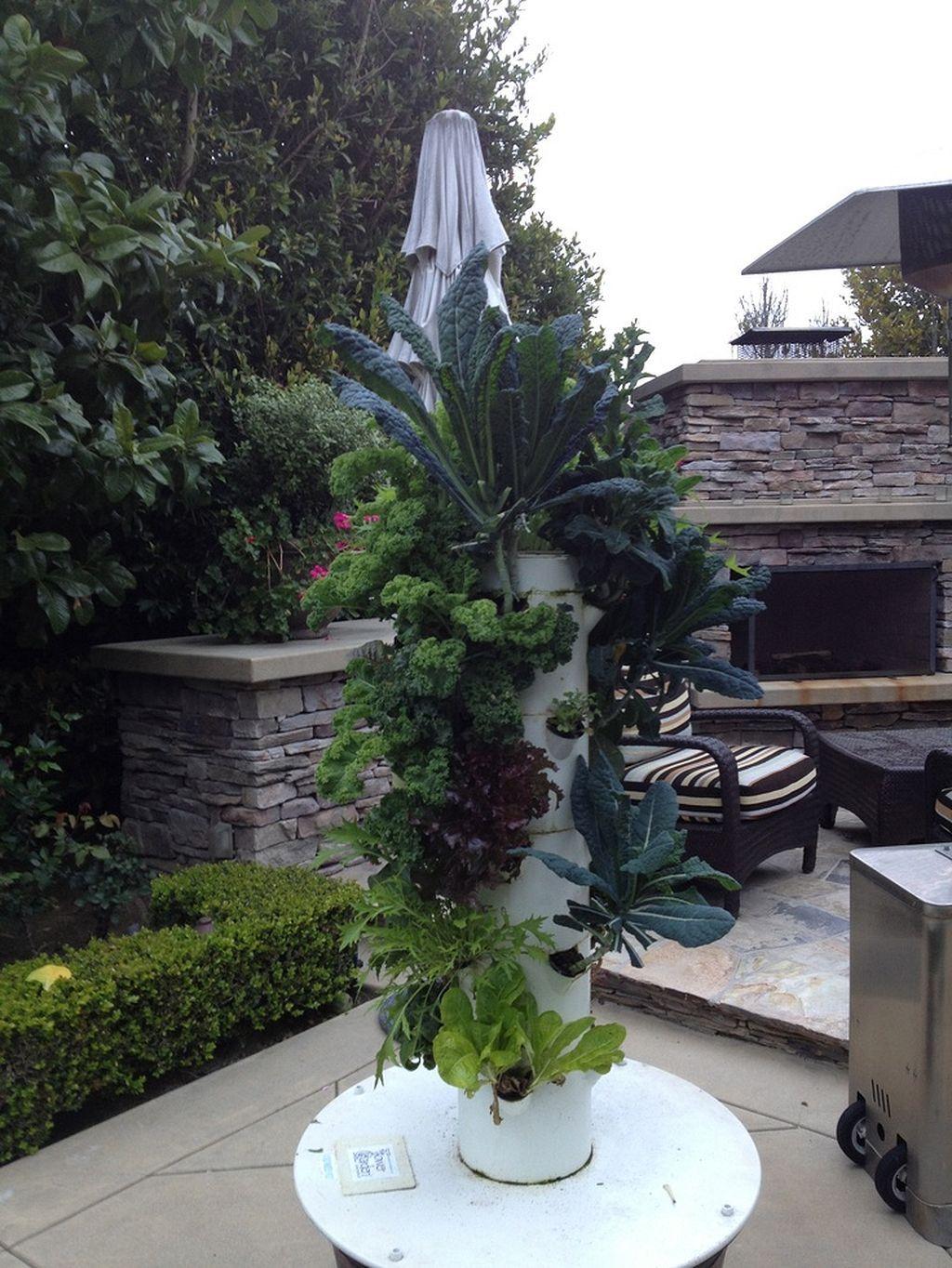 38 Incredible Hydroponic Garden at Backyard Hydroponic