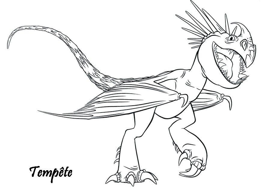 Dragons 2 Tempete Vipere Jpg 875 643 Dessin De Dragon Coloriage Dragon Coloriage