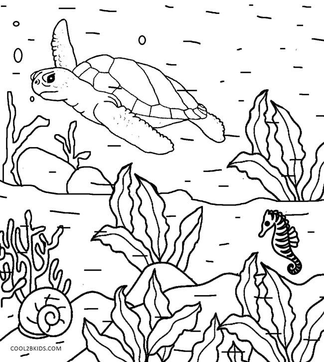 Printable Nature Coloring Pages For Kids | Cool2bKids ...