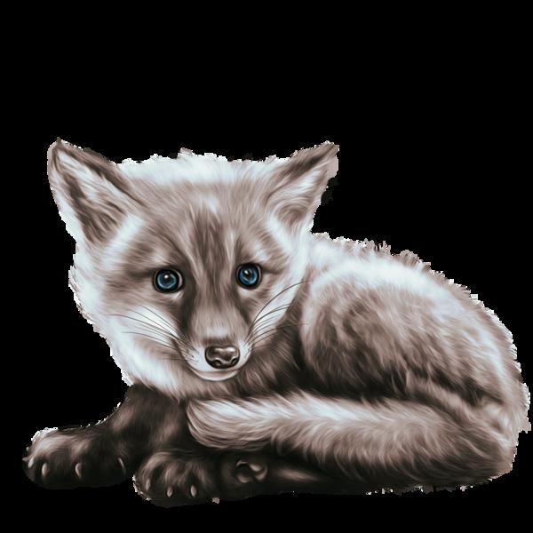 RENARD 2 Cartoon animals, Animals, Fox