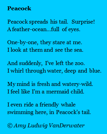 The Poem Farm: Peacock - A Couplet Poem - This whimsical peacock ...