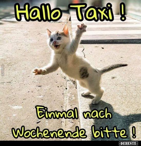 Hallo Taxi! Einmal nach Wochenende bitte!.. | Schönes