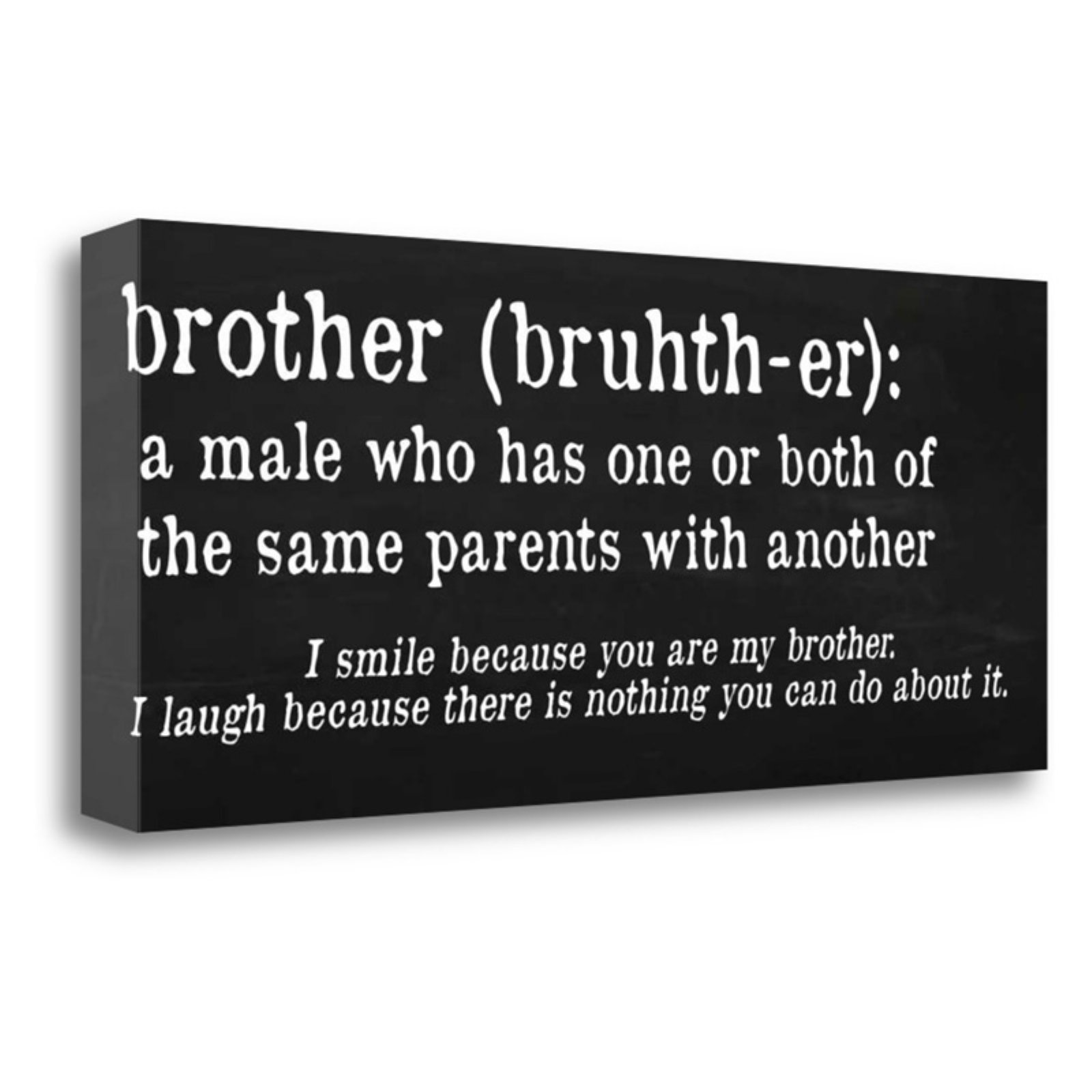 Tangletown Fine Art Brother Definition Canvas Wall Art By Anna
