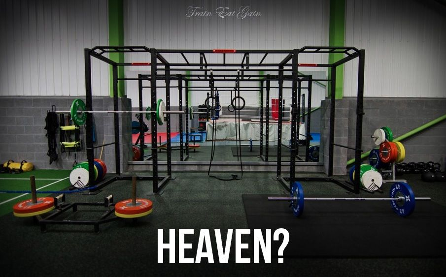 Garage gym drawbacks and direction reepicheep s coracle