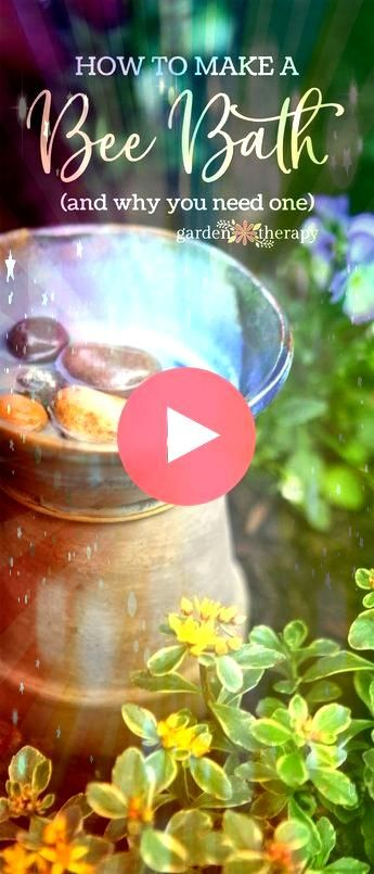 a Good Garden Host Make a Bee Bath Bee a Good Garden Host Make a Bee Bath Bee a Good Garden Host Make a Bee Bath How to make inexpensive selfwatering ollas using terracot...