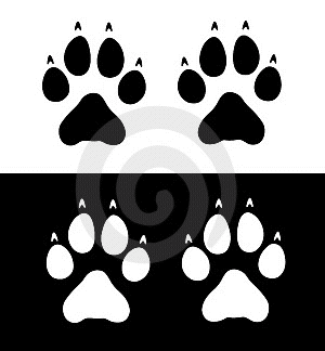 Clipart For Free Cat Paw Prints Clipart Art And Craft Images Wolf Paw Tattoos Dog Face Drawing