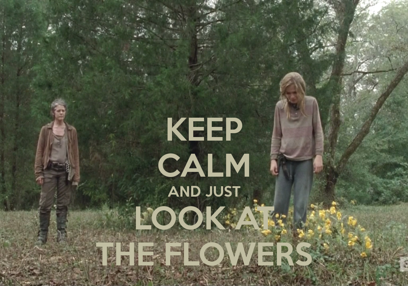 KEEP CALM AND JUST LOOK AT THE FLOWERS - KEEP CALM AND CARRY ON ...