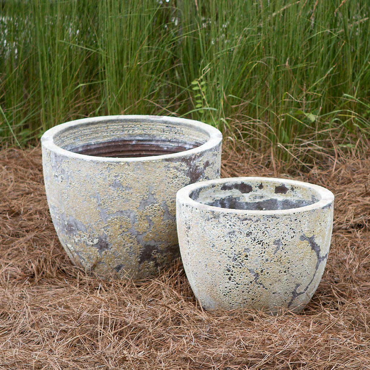 Barnacle Low Egg Pot
