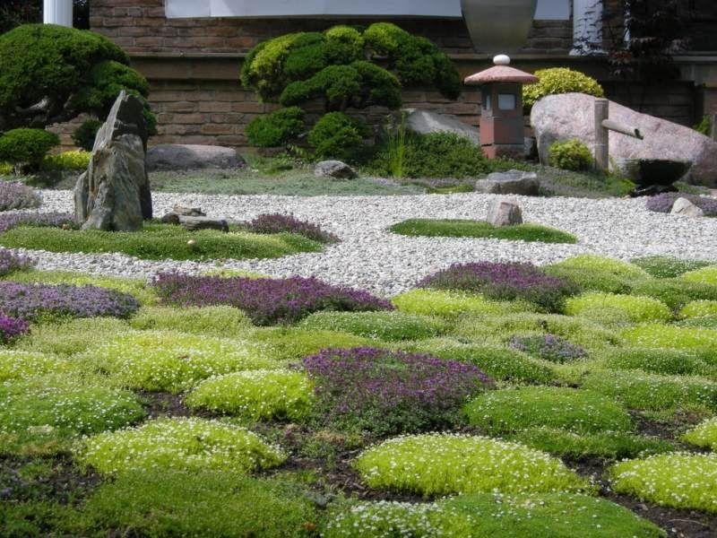 steingarten anlegen und bonsai baum als akzent nutzen garten bonsai baum japanischer garten. Black Bedroom Furniture Sets. Home Design Ideas