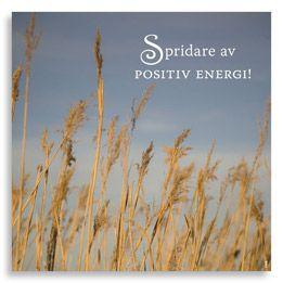 Kort Spridare av positiv energi, ur kollektion Livskonstnär. Foto: Anja Callius. Från (c) Kreativ Insikt.