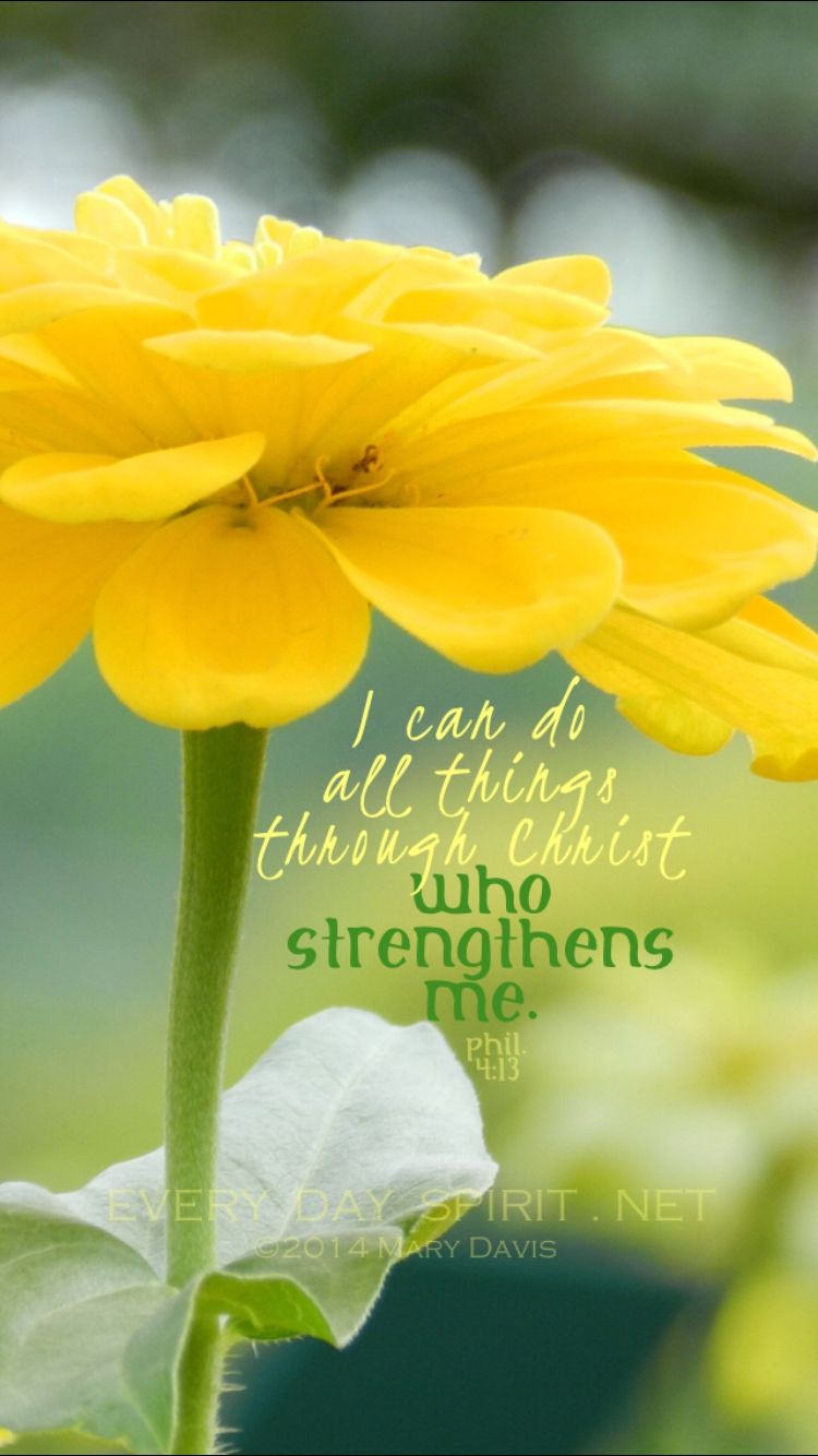 I can do all things through him who strengthens me. Philippians 4:13 ...