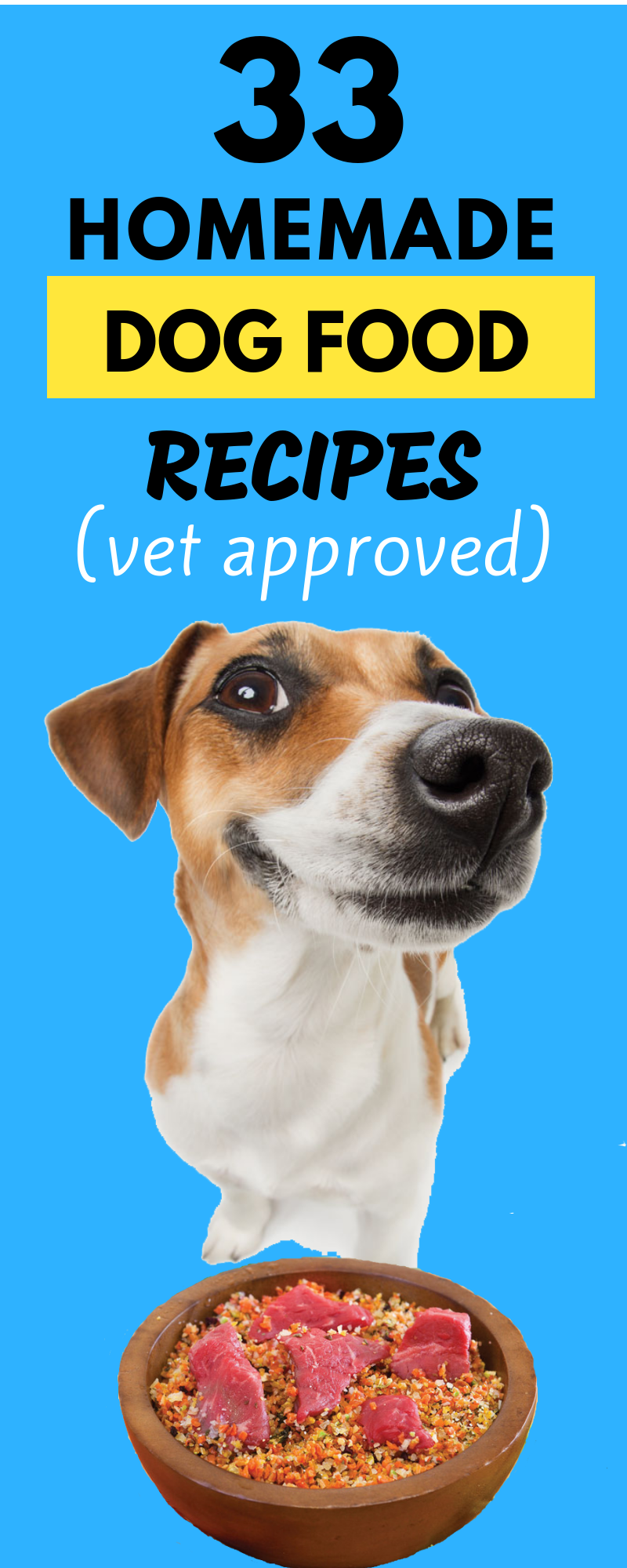 33 Genius Homemade Dog Food Recipes That Are Vet Approved Dog