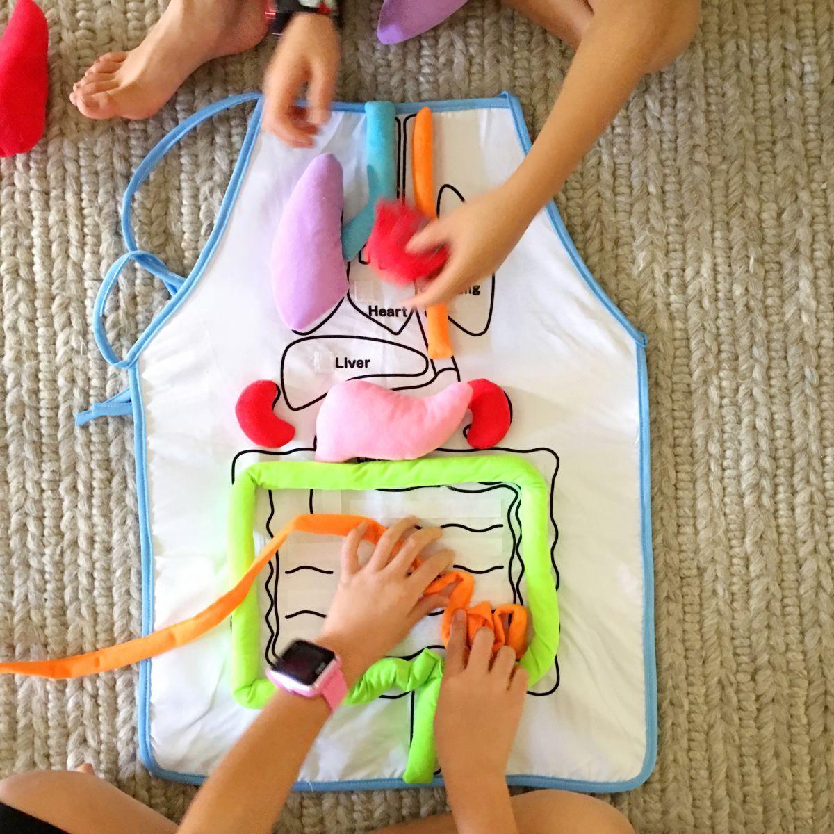 Fun Anatomy Apron Toy For Kids Corpo Humano Atividades Para