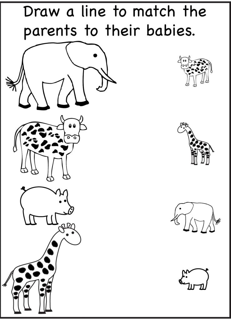 Same Different Worksheets Preschool
