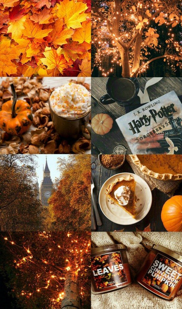 autumn, collage, cozy, fairy lights, fall Fall wallpaper
