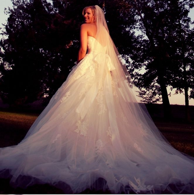Spanish Lace Wedding Gown: Pronovias Alcanar Wedding Gown With Cathedral Veil Spanish