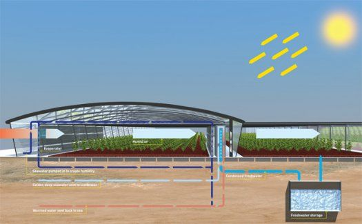 Outstanding The Seawater Greenhouse A Low Energy Means Of Growing Food Home Interior And Landscaping Oversignezvosmurscom