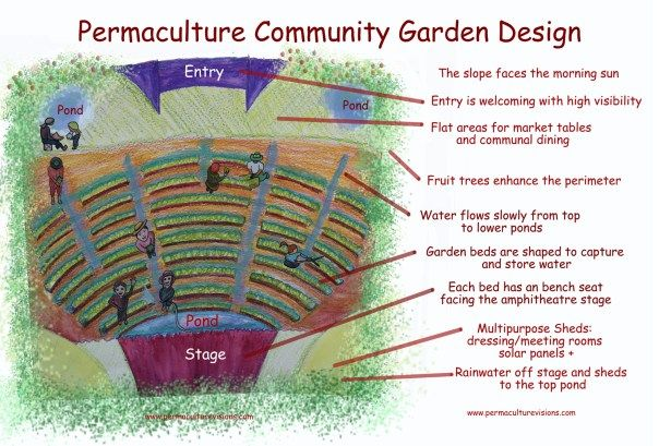 Permaculture design for community garden | Пермакультура