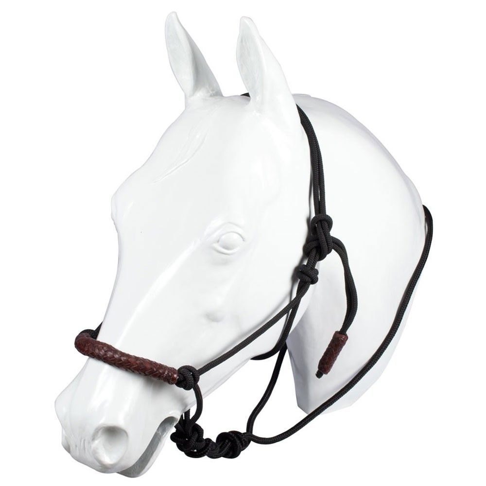Braided Leather Nose Rope Loping Halter | secret board | Pinterest ...
