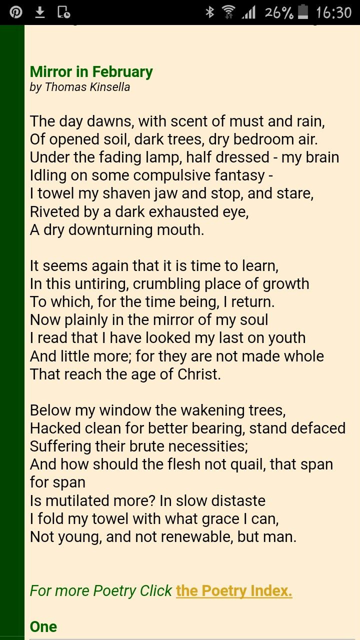 woman in the mirror poem