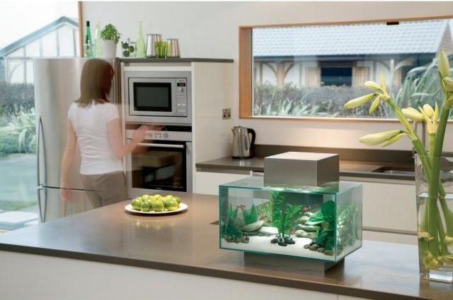 Nano Aquarium Klein Kuche Arbeitsplatte Becken Wasserpflanzen