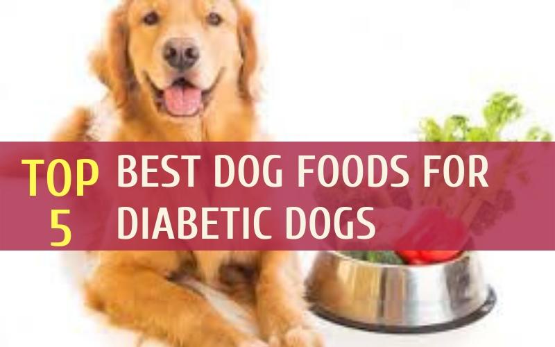 Best Dog Foods For Diabetic Dogs Diabetic Dog Food Diabetic Dog Dog Food Recipes