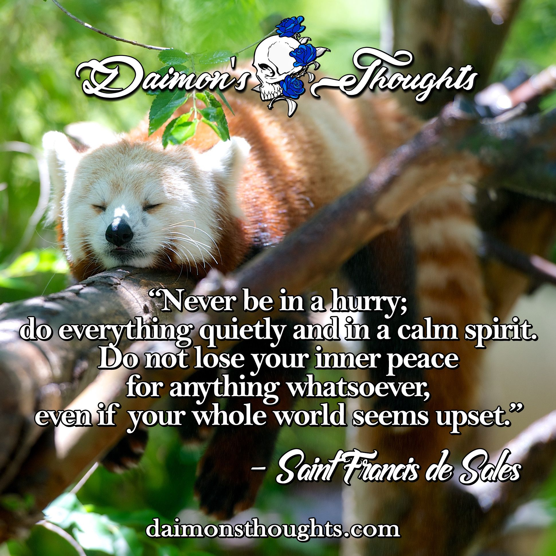 Check out: daimonsthoughts.com! :D  quotes, calm, relax, peace, positive, goodvibes, happy
