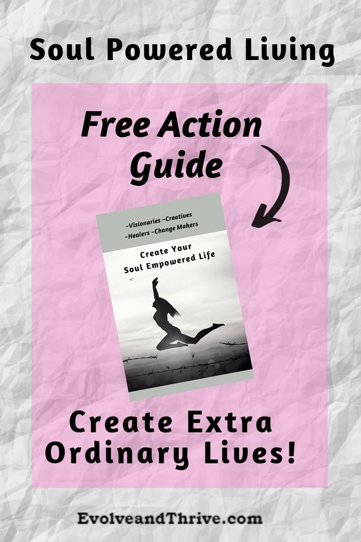 Create a Soul Empowered Life Live the Life  Purpose Your Soul Intended Visionaries Creatives Healers  Change Makers download this action guide for free Learn how to Recla...