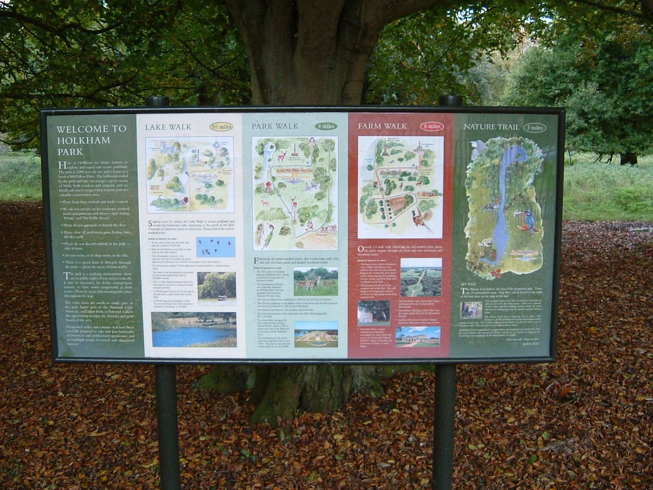 IRS Information signage, digital prints that include high res maps.