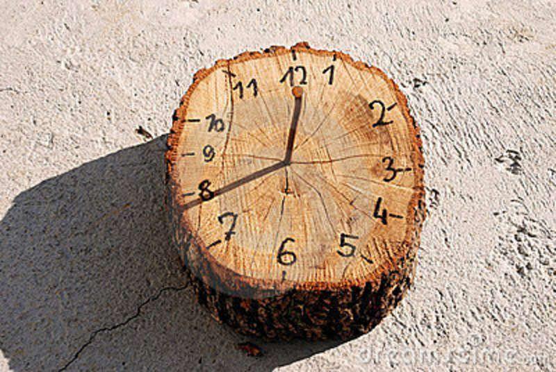 Morning Lifestyle Clock Sundial Gardening For Kids Natural