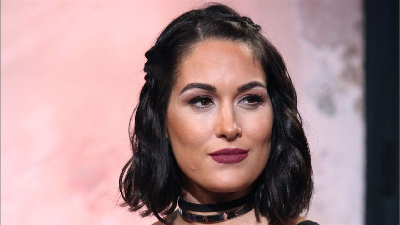 Brie Bella Is Expecting a Baby Girl!   Brie bella, Brie and Daniel bryan